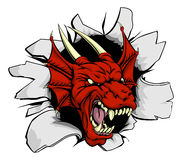 Red dragon smashing out. Drawing of an attacking dragon monster Royalty Free Stock Images