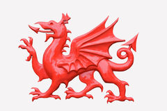 Red dragon. A red Welsh dragon isolated in white royalty free stock images
