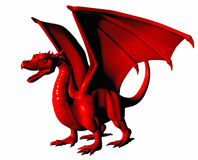 Red dragon on white. Royalty Free Stock Photo