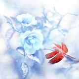 Red dragonfly in the snow on blue roses in a fairy garden. Artistic Christmas image. Red and blue tone. Cover quadrate image stock images