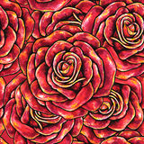 Red drawn roses seamless background.  Royalty Free Stock Photography