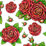 Red drawn roses seamless background. Flowers illustration front view. Handwork by felt-tip pens.  Stock Photography
