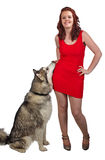 Red dress and the dog Royalty Free Stock Images