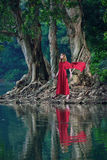 Red dress lady in Jungle royalty free stock images