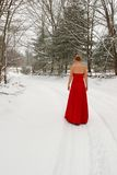 Red dress in snow Stock Images