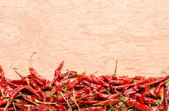 Red dried chili pepper on wooden background Stock Image