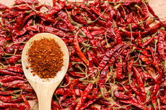 Red dried chili pepper on wooden spoon stock images