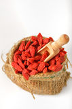 Red dried goji Stock Images