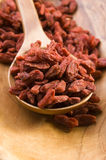 Red dried goji berries Stock Images