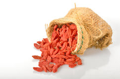 Red dried goji berries Stock Image