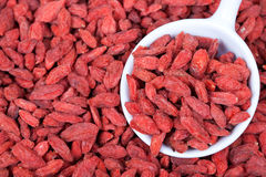 Red dried goji berries background Royalty Free Stock Photo