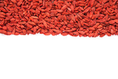 Red dried goji berries background Stock Images