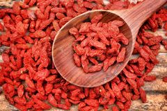 Red dried goji berries Royalty Free Stock Image