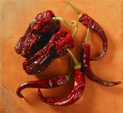 Red dried hot chili peppers Stock Photos