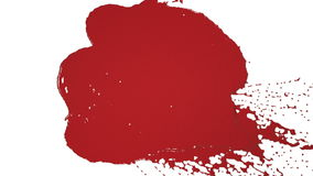 Red drops falling on white screen slow motion. Colored paint stock video footage
