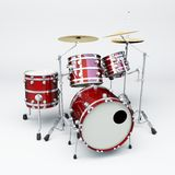Red drum Stock Image