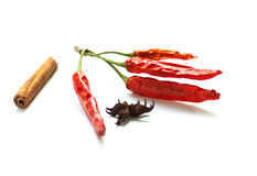 Red dry chiili and spices Royalty Free Stock Photo