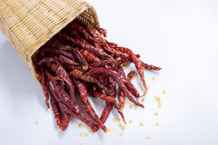 red dry chili peppers in basket on white background. Stock Image