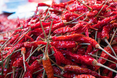Red dry chilli Royalty Free Stock Images
