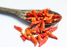 Red dry chilli is very hot in thai food Royalty Free Stock Image