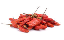 Red dry chillies on white background Stock Image
