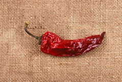 Red dry pepper on a sackcloth Royalty Free Stock Photo