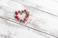 Red dry roses scattered on the light wooden background. Love royalty free stock images
