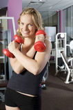 Red dumbbell Stock Photos
