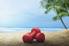 Red dumbbells for exercise. On the beach Stock Photography