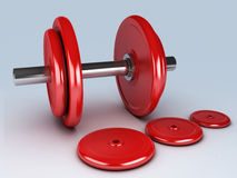 Red dumbbells for fitness Stock Image
