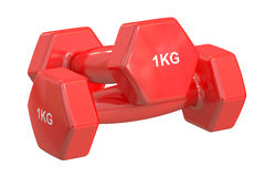 Red Dumbbells 1 kg, 3D rendering Royalty Free Stock Photo