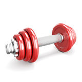 Red dumbbells on white background. Royalty Free Stock Images