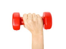 Red dumbell. Hand holding out red dumbell Royalty Free Stock Photos