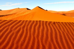 Red dune in Namib desert,Namibia. Sussuvlei stunning pan in the Namib Desert surrounded by the massive red sand dunes royalty free stock photo