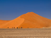 Red dune of Namid desert Stock Photos