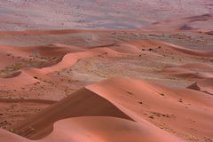 Red Dunes Royalty Free Stock Photography