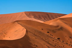 Red Dunes Stock Images