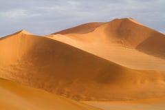 Red dunes. Impressive red sand dunes of the Namib Desert Stock Image