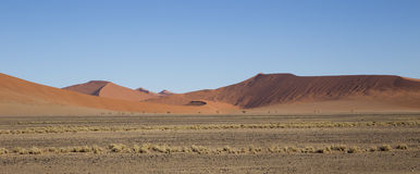 Red dunes in the Namib Desert, in Sossusvlei, Namibia. Red dunes in the Namib Desert, in Sossusvlei, in the Namib-Naukluft National Park of Namibia Stock Images