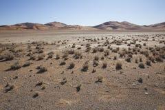 Red dunes in the Namib Desert, in Sossusvlei, Namibia Stock Images
