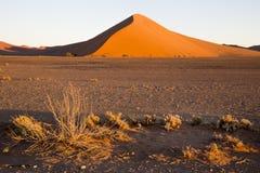 Red dunes in the Namib Desert, in Sossusvlei, Namibia Royalty Free Stock Image