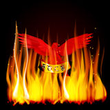 Red eagle fire. Vector illustration of a red eagle on fire with a scroll in its claws and an inscription rock metal. You can use a black background Royalty Free Stock Photography