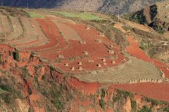 Red earth area in Yunnan stock photos
