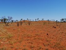 The red earth of the Australian outback Stock Photos