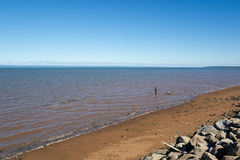 Red earth at the Bay of Fundy, Nova Scotia, Canada Royalty Free Stock Image