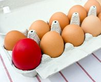 Red Easter Egg Stock Images