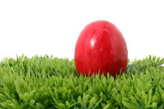 Red Easter egg Royalty Free Stock Images