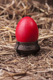 Red Easter egg in dish Stock Image