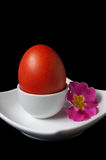 Red Easter Egg and Flower Stock Image