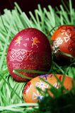 Red Easter egg and grass Royalty Free Stock Images